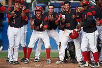 Batavia Muckdogs players Mike Garzillo (11), Mathew Brooks (46), Zachary Daly (38), Bryan De La Rosa (15), Rony Cabrera (26), Nestor Bautista (39), and Samuel Castro (5) wait for Marcos Rivera (out of frame) after hitting a walk off three run home run in the bottom of the ninth inning during a game against the West Virginia Black Bears on June 25, 2017 at Dwyer Stadium in Batavia, New York.  Batavia defeated West Virginia 4-1 in nine innings of a scheduled seven inning game.  (Mike Janes/Four Seam Images)