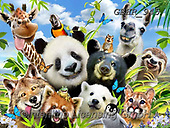 Howard, REALISTIC ANIMALS, REALISTISCHE TIERE, ANIMALES REALISTICOS, paintings+++++,GBHR945,#a#, EVERYDAY ,selfies