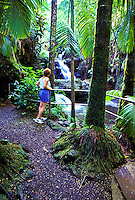 Woman viewing onomea falls at Hawaii tropical botanical gardens in Hilo