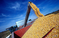 A combine harvester dumps freshly harvested corn into a wagon. Kansas.