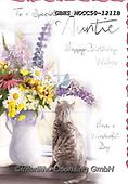 John, FLOWERS, BLUMEN, FLORES, paintings+++++,GBHSMOCC50-1211B,#F#, EVERYDAY