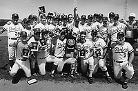 The team celebrates winning the NCAA Division 1 Baseball Championship during Stanford's 9-4 win over Arizona State in the College World Series in Omaha, NE. Holding the trophy are front row (l to r) Lee Plemel, Frank Carey, Paul Carey, Doug Robbins, Brian Johnson, Jeff Saenger, head coach Mark Marquess. Back row (l to r): Asssistant Tom Dunton,  Troy Paulsen, Tim Griffin, Rob Kamerschen, Scott Weiss, manager Scott Schaeffer, Steve Chitren, Jack Hollis, Eric DeGraw, assistant coach Dean Stotz, Brian Keyser, Mike Eichter, assistant coach Kirk Mason, assistant coach Scott Laurence, Mike Mussina, Ed Sprague, and Athletic Director Andy Geiger. Not pictured or blocked from view: Stan Spencer, Eric Cox, Jeff Light, and Ryan Turner.
