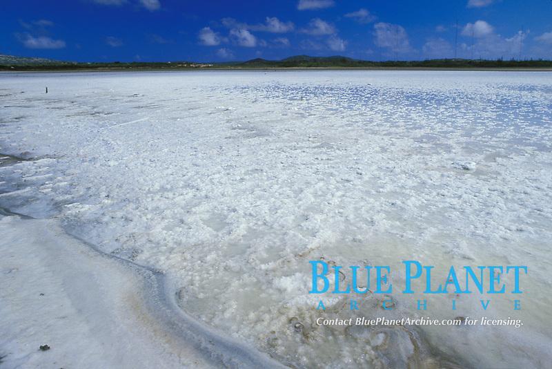 salt drying in pond near Kralendjik, Bonaire Netherland Antilles (Dutch ABC Islands) (Caribbean, Atlantic)