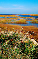 Marsh grass and inlets on the bay side, Yarmouth, Cape Cod