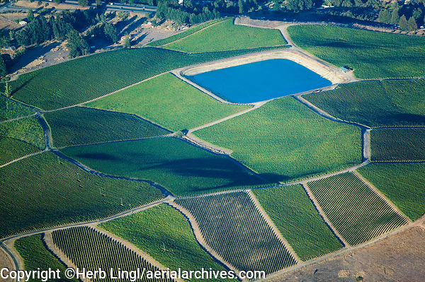 aerial photograph of a vineyard irrigation reservoir in Sonoma County, California
