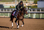 October 30, 2019: Breeders' Cup Turf Sprint entrant Stubbins, trained by Doug F. O'Neill, exercises in preparation for the Breeders' Cup World Championships at Santa Anita Park in Arcadia, California on October 30, 2019. Carolyn Simancik/Eclipse Sportswire/Breeders' Cup/CSM