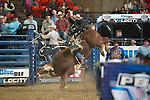 PBR - Wheeling, WV - 3.21.2015 - Bulls & Action