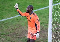 WASHINGTON, DC - NOVEMBER 8: Bill Hamid #24 of D.C. United watches his teammates during a game between Montreal Impact and D.C. United at Audi Field on November 8, 2020 in Washington, DC.