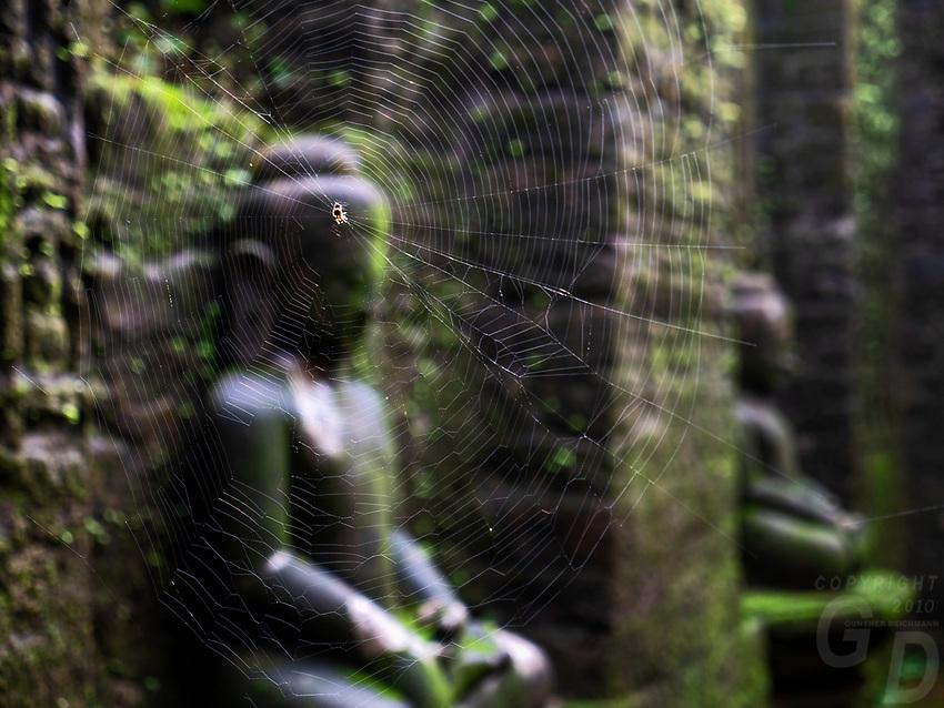 Koe Thaung 90000 images of Buddha Temple, Mrauk U, Rakhine State Myanmar Spider web in the corridors