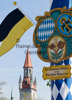 Deutschland, Bayern, Oberbayern, Muenchen: Maibaum auf dem Viktualienmarkt und Alte Peter, Muenchens aeltestes Gebaeude, erbaut 1368 | Germany, Bavaria, Upper Bavaria, Munich: may pole at Viktualien market and Munich's oldest building Old Peter, built 1368