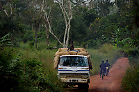 A truck carries sacks of cocoa, bought on the black market, out from the forest.