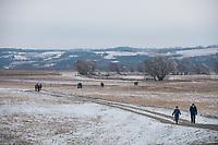 Auenlandschaft, Nationalpark Unteres Odertal im Winter, Uckermark, Brandenburg, Deutschland