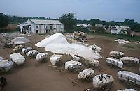 INDIA Madhya Pradesh Kasrawad, farmer supply harvested cotton to ginning factory / INDIEN , Bauern liefern ihre geerntete Baumwolle auf Ochsenkarren bei einer Entkernungsfabrik in Kasrawad an