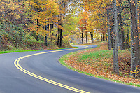 The scenic road traveled on the Blue Ridge Parkway in Nelson County, VA. Photo/Andrew Shurtleff