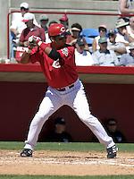 March 31, 2004:  Juan Castro of the Cincinnati Reds organization during Spring Training at Ed Smith Stadium in Sarasota, FL.  Photo copyright Mike Janes/Four Seam Images