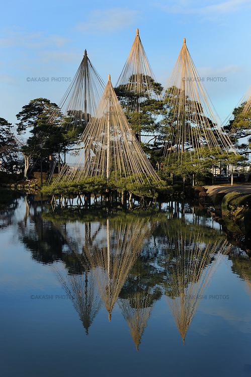 Trees protected with Yukitsuri for the coming heavy snow in winter in Kenroku Garden, Kenrokuen.<br /> <br /> Arbres protégés avec Yukitsuri contre la forte neige qui s'annonce en hiver dans Kenroku Garden, Kenrokuen.