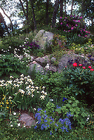 Spring garden hill slope with Irises, peonies, rhododendron, garden cherub statue in rock crevices, lovely landscaping design mix of plants and trees, flowers, foliage