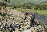 Full-time stone wallers and sheep shearers Phillip Hargreaves and Roger Charnley tackle  a 160 metre limestone stretch between Kilnsey and Kettlewell, North Yorkshire..