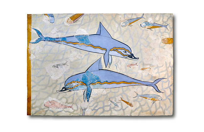 The Minoan 'Dolphin Fresco' wall art from the Queen's Megaron, Knossos Palace, 1600-1450 BC. Heraklion Archaeological Museum.  White Background. <br /> <br /> Two dolphins are depicted swimming amongst small fish .