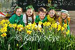 All ready for St Patricks Day in Ballyfinnane NS on Tuesday. L to r: Clodagh O'Shea, Leah Fitzgerald, Kieran Roberts, Naoise Flynn and Eve Duggan.