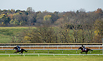 November 1, 2020: Royal Approval, trained by trainer Wesley A. Ward, exercises in preparation for the Breeders' Cup Juvenile Fillies Turf at Keeneland Racetrack in Lexington, Kentucky on November 1, 2020. Alex Evers/Eclipse Sportswire/Breeders Cup /CSM