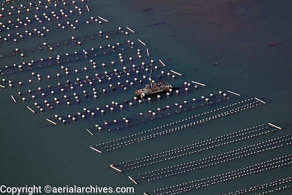 aerial photograph of the Carlsbad Aquafarm oyster beds, Carlsbad, San Diego County, California