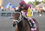 R Heat Lightning (no. 5), ridden by John Velazquez and trained by Todd Pletcher, wins the  41st running of the grade 2 Gulfstream Oaks for three year old fillies on April 2, 2011 at Gulfstream Park in Hallandale Beach, Florida.  (Bob Mayberger/Eclipse Sportswire)