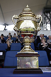 August 07, 2009:General view of the AGA Khan FEI Meydan Nations Cup trophy. Meydan FEI Nations Cup. Failte Ireland Horse Show. The RDS, Dublin, Ireland.