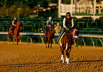 August 30, 2020: Art Collector, early second choice, jogs as horses prepare for the 2020 Kentucky Derby and Kentucky Oaks at Churchill Downs in Louisville, Kentucky. The race is being run without fans due to the coronavirus pandemic that has gripped the world and nation for much of the year. Scott Serio/Eclipse Sportswire/CSM