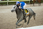 Hallandale Beach, FL- #6 Mohaymen with Junior Alvarado up after winning the G2 Fountain of Youth at  Gulfstream Park. (Photo by Arron Haggart)