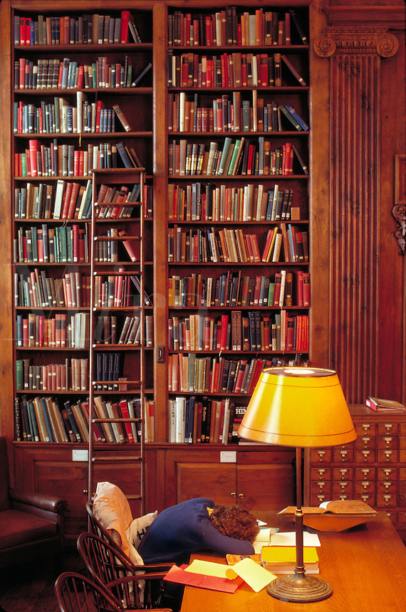Dunster House Library Cambridge MA