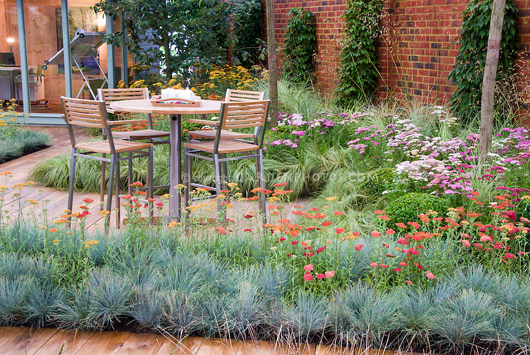 Achilea, Ornamental grass groundcover Festuca, deck patio, garden furniture patio set with table and chairs, house with drawing board, glass windows, door, brick wall, ornamental grass, home landscaping