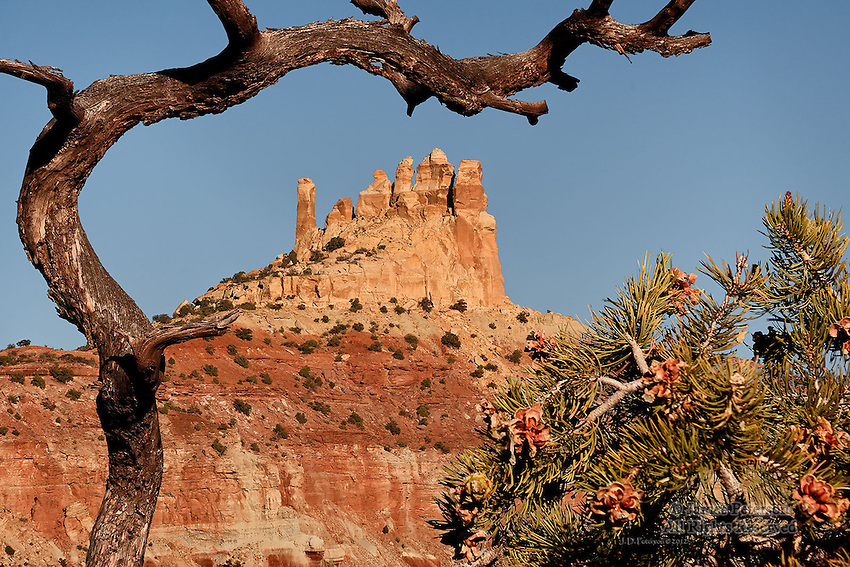 Family Butte from Reds Canyon Road, San Rafael Swell, Utah