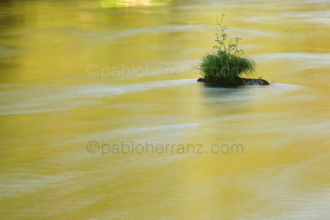 Rio Eume en el Parque Natural de las Fragas del Eume, en Pontedeume.