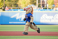High Point Rockers mascot Hype runs the bases between innings of the game against the Southern Maryland Blue Crabs at Truist Point on June 18, 2021, in High Point, North Carolina. (Brian Westerholt/Four Seam Images)