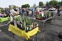 HOW DOES YOUR GARDEN GROW?<br />
