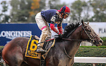 Tonalist (no. 6) ridden by John Velazquez and trained by Christophe Clement, wins the grade 1 Jockey Club Gold Cup for older horses on October 3, 2015 at Belmont Park in Elmont (Sophie Shore/Eclipse Sportswire)