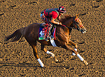 October 27, 2014:  Kaigun, trained by Mark Casse, exercises in preparation for the Breeders' Cup Mile or Turf Sprint at Santa Anita Race Course in Arcadia, California on October 27, 2014. John Voorhees/ESW/CSM