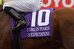 """DEL MAR, CA. AUGUST 26:#10 Giant Expectations saddle towel after he won the  Pat O'Brien Stakes (Grade ll), Breeders' Cup """"Win and You're in Dirt Mile Division"""" on August 26, 2017, at Del Mar Thoroughbred Club in Del Mar, CA.(Photo by Casey Phillips/Eclipse Sportswire/Getty )"""