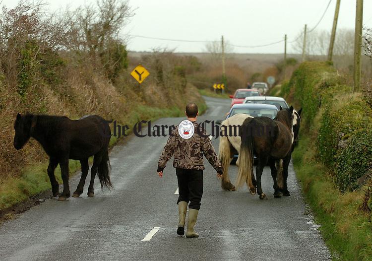 Horses on the road near Ballyvaughan.Pic Arthur Ellis.