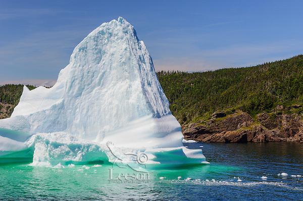 Iceberg floats in Trinity Bay off the Bonavista Peninsula of eastern Newfoundland, Newfoundland and Labrador, Canada.