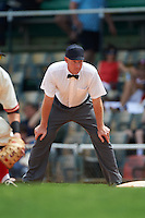 Umpire James Rackley during the 20th Annual Rickwood Classic Game between the Jacksonville Suns and Birmingham Barons on May 27, 2015 at Rickwood Field in Birmingham, Alabama.  Jacksonville defeated Birmingham by the score of 8-2 at the countries oldest ballpark, Rickwood opened in 1910 and has been most notably the home of the Birmingham Barons of the Southern League and Birmingham Black Barons of the Negro League.  (Mike Janes/Four Seam Images)