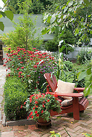 Red themed flower garden to attract hummingbirds, with brick patio, Adirondack chair, house, walkway, picket fence, beebalm Monarda in bloom, corn, tomatoes, shrubs, trees, landscape for pretty place to sit outdoors at home