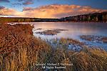Black Moshannon Lake, Black Moshannon State Park, Pennsylvania