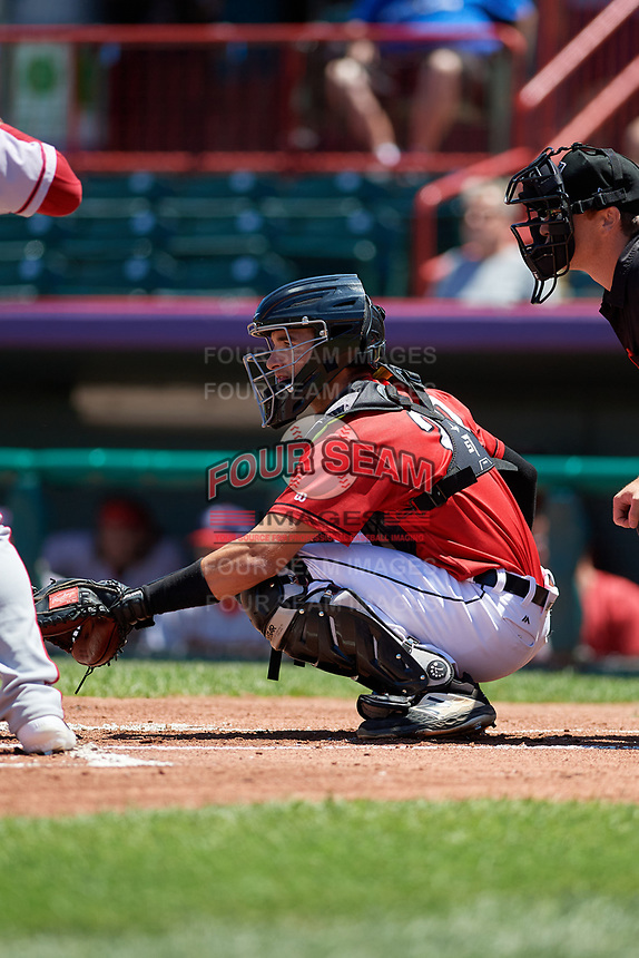 Erie SeaWolves catcher Joey Morgan (20) during an Eastern League game against the Harrisburg Senators on June 30, 2019 at UPMC Park in Erie, Pennsylvania.  Erie defeated Harrisburg 4-2.  (Mike Janes/Four Seam Images)