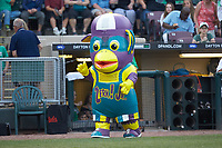 Zerk! Jr. entertains the fans between innings of the Midwest League game between the Bowling Green Hot Rods and the Dayton Dragons at Fifth Third Field on June 9, 2018 in Dayton, Ohio. The Hot Rods defeated the Dragons 1-0.  (Brian Westerholt/Four Seam Images)