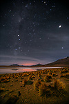 Stars shine bright over Altiplano, Bolivia. Grass is jarava ichu, commonly known as Peruvian feathergrass.