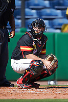 Maryland Terrapins catcher Dan Maynard (11) looks to the dugout during a game against the Alabama State Hornets on February 19, 2017 at Spectrum Field in Clearwater, Florida.  Maryland defeated Alabama State 9-7.  (Mike Janes/Four Seam Images)