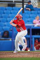 Palm Beach Cardinals third baseman Allen Staton (33) at bat during a game against the Dunedin Blue Jays on April 15, 2016 at Florida Auto Exchange Stadium in Dunedin, Florida.  Dunedin defeated Palm Beach 8-7.  (Mike Janes/Four Seam Images)