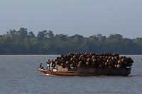 """Pequena embarcaÁ""""o transporta paneiros feitos da palmeira de aÁaÌ apÛs a venda do fruto na Feira do AÁaÌ.<br /> BelÈm do rio Guam· e regi""""o das ilhas.<br /> BelÈm, Par·, Brasil<br /> Foto Paulo Santos<br /> 23/12/2012"""